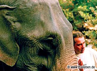 Der Elephantenflüsterer