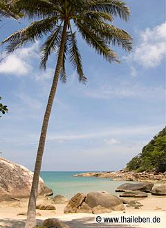 Der seichte Tong Reng Strand am Treehouse KP.